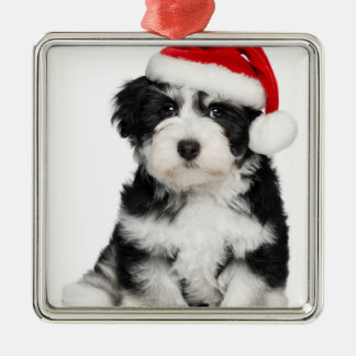 Cute Christmas Havanese Puppy Dog 2 Silver-Colored Square Decoration