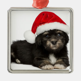 Cute Christmas Havanese Puppy Dog Silver-Colored Square Decoration