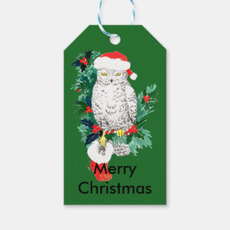 Cute Christmas Holiday Owl with Stocking