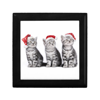 Cute Christmas Kitten Gift Box