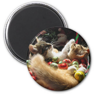 Cute Christmas Kittens in Love on Xmas Eve 6 Cm Round Magnet