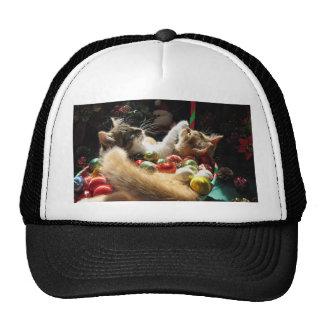 Cute Christmas Kittens in Love on Xmas Eve Cap