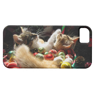 Cute Christmas Kittens in Love on Xmas Eve iPhone 5 Cover