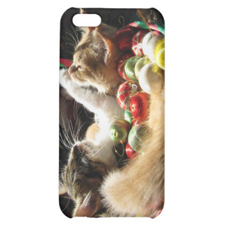 Cute Christmas Kittens in Love on Xmas Eve iPhone 5C Cases