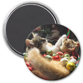 Cute Christmas Kittens in Love on Xmas Eve Magnet