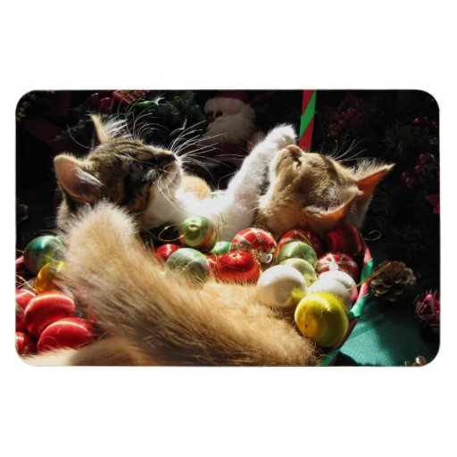 Cute Christmas Kittens in Love on Xmas Eve Rectangular Magnets