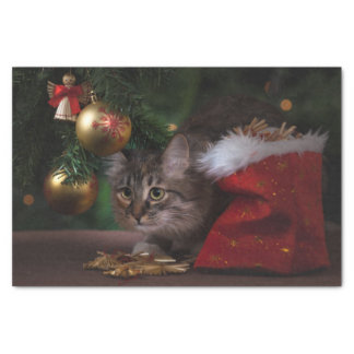 Cute Christmas Kitty Cat Tissue Paper