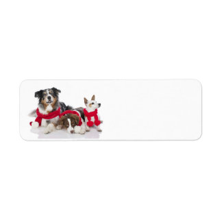 Cute Christmas Puppies Return Address Label
