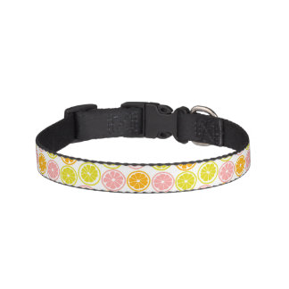 Cute Citrus Fruits Pattern Pet Collar