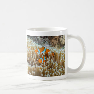 Cute Clownfish of the Coral Sea Coffee Mug