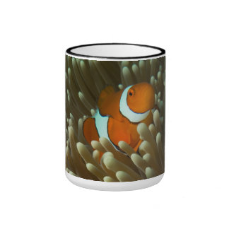 Cute Clownfish on the Great Barrier Reef Ringer Mug