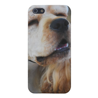 Cute Cocker iPhone 5/5S Cases