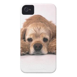 Cute Cocker Spaniel Case-Mate iPhone 4 Case