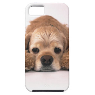 Cute Cocker Spaniel Case For The iPhone 5