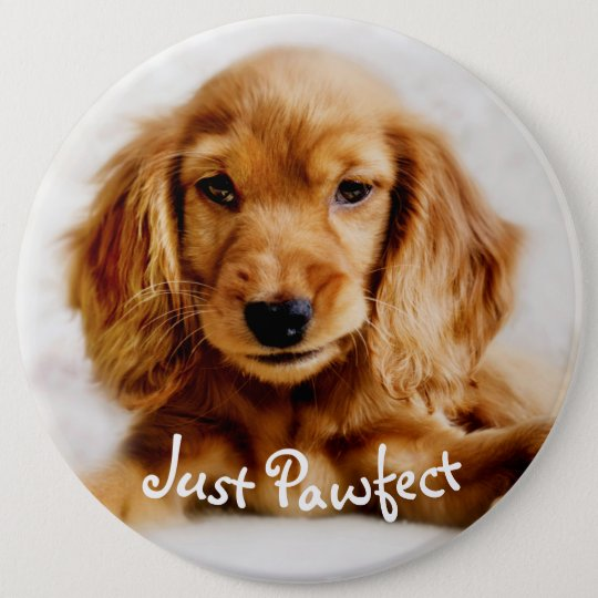 Cute Cocker Spaniel Dog Badge/Pin 6 Cm Round