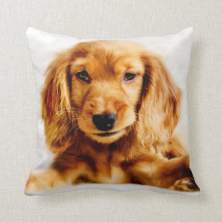 Cute Cocker Spaniel Puppy Cushion