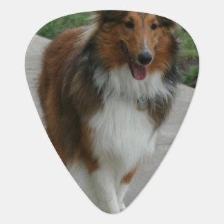 Cute Collie Guitar Pick