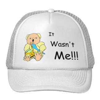 """Cute coloured cartoon bear with """"it wasn't me""""text hat"""