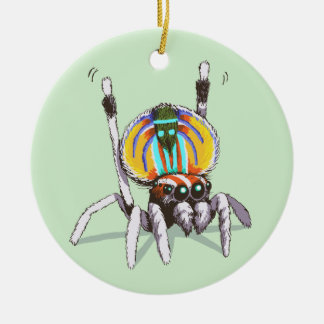 Cute Colourful Peacock Spider Drawing Art Ornament