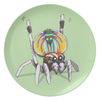 Cute Colourful Peacock Spider Drawing Art Plate