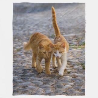 Cute Companioned Kittens Walk the Same Path - soft Fleece Blanket