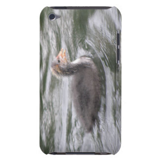 Cute Coot Chick on Choppy Waters  iPod Touch Cases