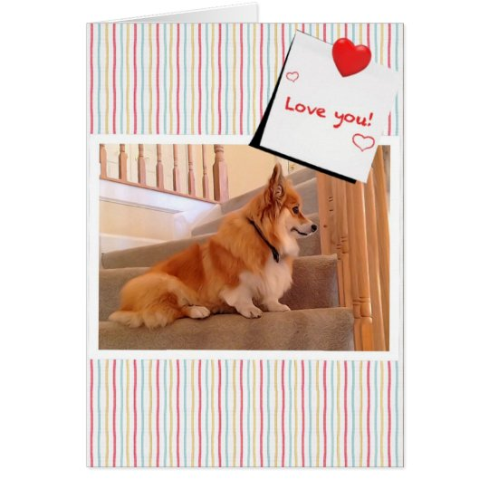 Cute Corgi Fluffy on the Stairs Valentine Card