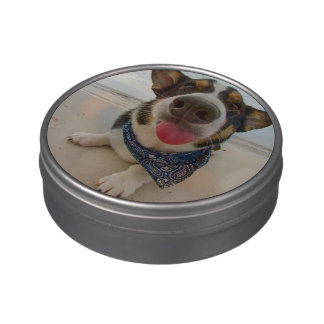 Cute Corgi with Tongue Out Candy Tins