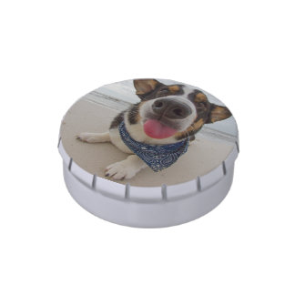 Cute Corgi with Tongue Out Jelly Belly Tin