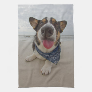 Cute Corgi with Tongue Out Kitchen Towels