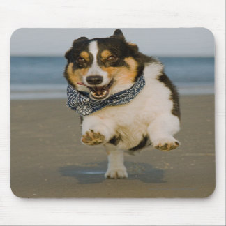 Cute Cori Running & Jumping on Beach Mouse Pads