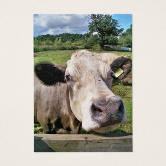 CUTE COW BUSINESS CARD