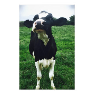 Cute cow farm animal calf personalised stationery
