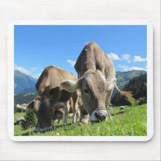 Cute cows in Austria Mouse Mat