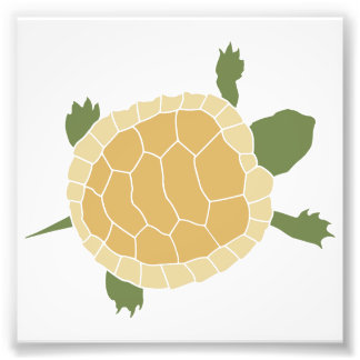 Cute Crawling Little Turtle Tortoise Photo Print