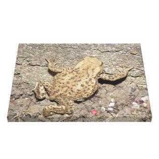 Cute Crawling Toad Canvas Print
