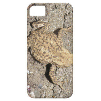 Cute Crawling Toad iPhone 5 Case