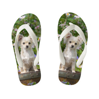 Cute cream Chihuahua Dog Puppy Pet Photo - Kids Flip Flops