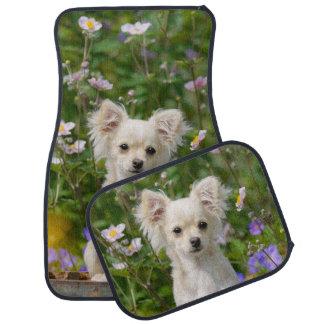 Cute cream Chihuahua Dog Puppy Photo - floor-mats Car Mat
