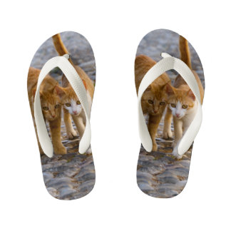 Cute Cuddly Cats Kittens Friends Stony Path - Kids Flip Flops