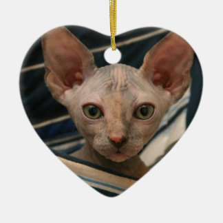 Cute curios sphynx kitten christmas ornament