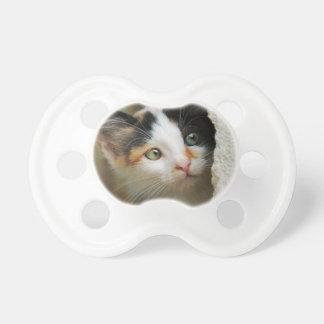 Cute Curious Cat Kitten Prying Eyes Head Photo Pet Dummy