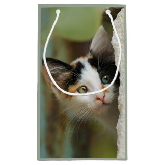 Cute Curious Cat Kitten Prying Eyes Portrait  Wrap Small Gift Bag