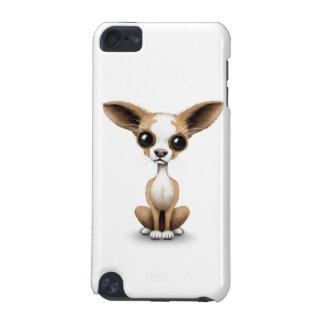 Cute Curious Chihuahua with Large Ears on White iPod Touch 5G Cases