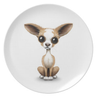 Cute Curious Chihuahua with Large Ears on White Dinner Plate