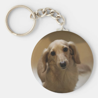 Cute dachschund dog keychains