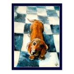 Cute Dachshund dog postcard