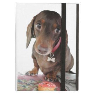 Cute Dachshund love iPad case