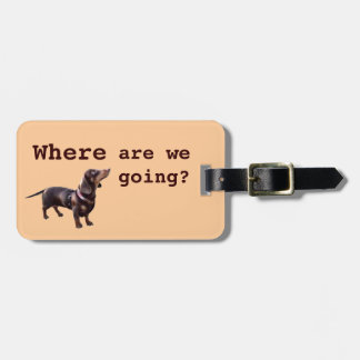 Cute dachshund luggage tag