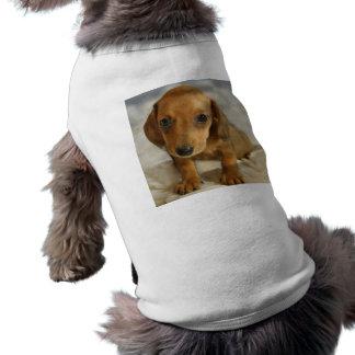 Cute Dachshund  Puppy (Cream Brown) on Nappies Sleeveless Dog Shirt